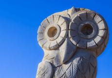Weisheit: Die 5 Prinzipien des gelingenden Lebens